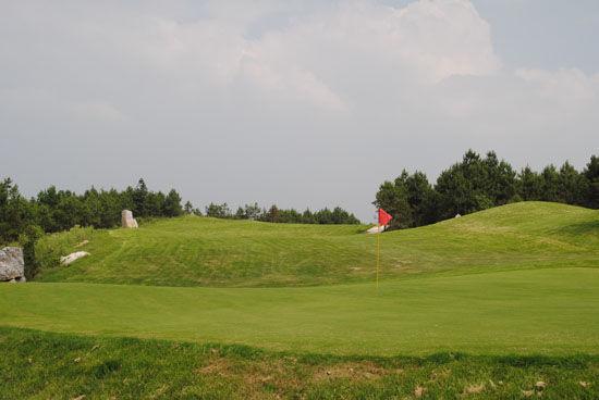 贵州国家森林公园改建高尔夫球场 万亩山林遭破坏