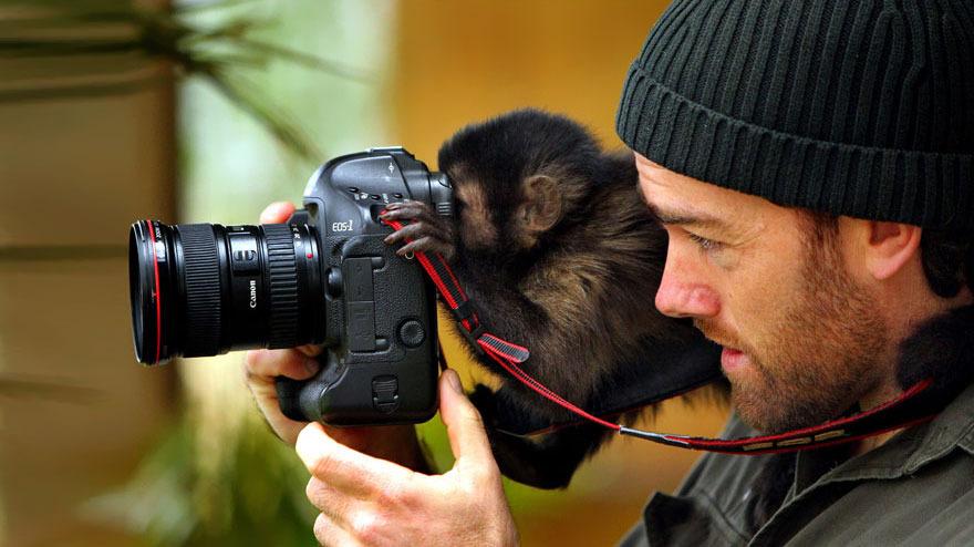 它们都爱相机 动物界的摄影爱好者大pk(组图)