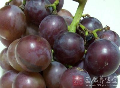 葡萄不仅味美可口,而且营养价值很高