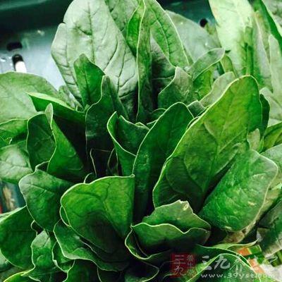 菠菜的蛋白质量高于其他蔬菜