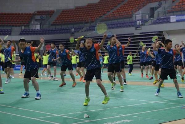 省运羽毛球(青少年组)挥拍开打初中视频美术教案图片