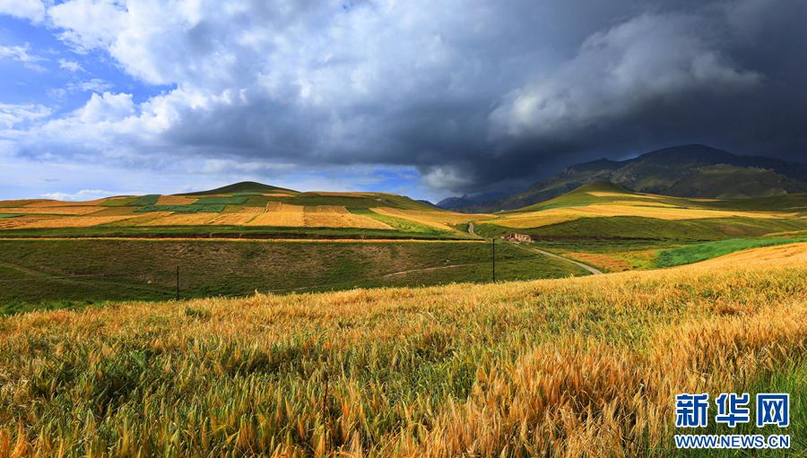 图为航拍的祁连县卓尔山景区秋景.