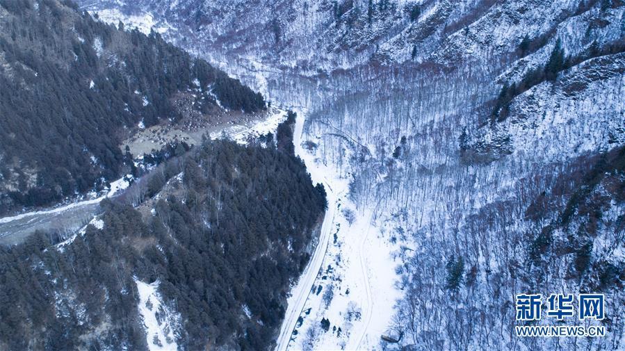 """(美丽中国)(3)冬季北山的""""林海雪原"""""""