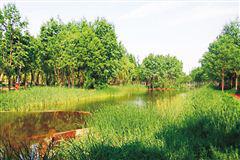 http://www.hjw123.com/lvsenenyuan/33094.html