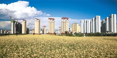 http://www.edaojz.cn/caijingjingji/177805.html