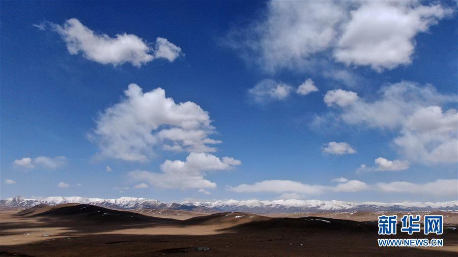 (环境)(3)雪后的金银滩草原
