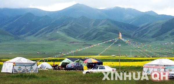 青海省海南藏族自治州兴海县河卡镇海拔超过3000米,这里草原风光魅力