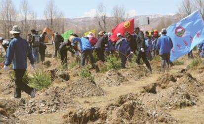 贵南:党旗领航共建绿色家园
