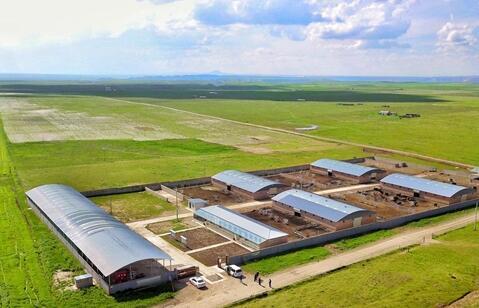 送体验金官网贵南:畜牧产业扶贫见成效