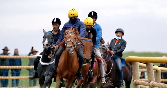 马上有好戏!贵南县传统赛马会驰骋草原激情无限