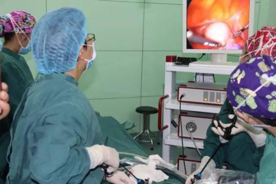 做了卵巢畸胎瘤手術復查又有55x39囊性回聲丶醫生說可能是黃體囊腫丶圖片