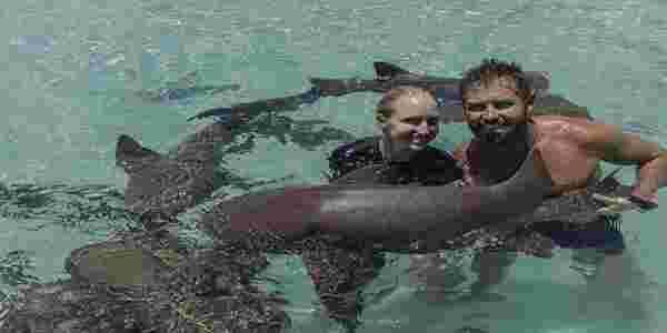 美国荒野求生专家结婚 鳄鱼鲨鱼等动物出席婚礼