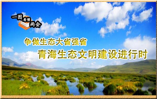 一图看懂两会:青海生态文明建设进行时