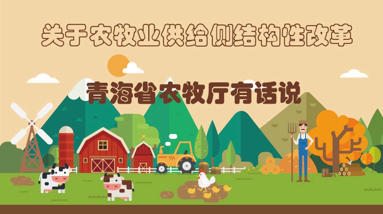 关于农牧业供给侧结构性改革 青海农牧厅有话说