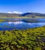 青海今年将投资7500万元保护3处国际重要湿地