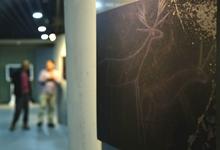 玉树岩画国际论坛在西宁开幕