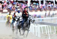 赛马——草原上的赛马盛会