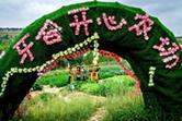 """青海牙合村的""""美麗變身"""""""