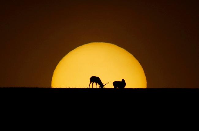 光影可可西裏:白天不懂夜的美