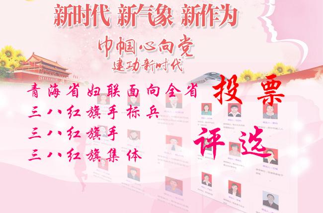 2017年青海省三八紅旗手評選