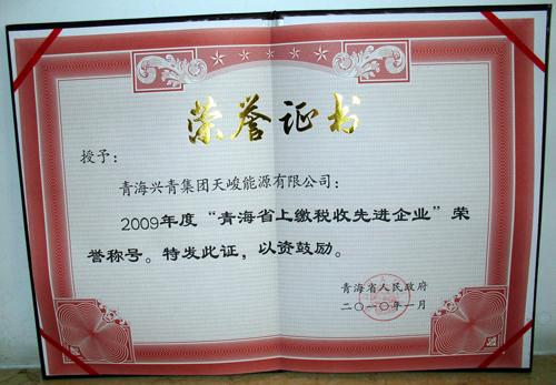 天峻能源公司被授予2009年度青海上繳稅收先進企業稱(chen)號