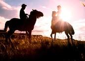 馬背上的天光(guang)