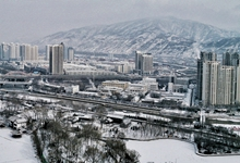 青海西寧迎來2020年第一場降雪