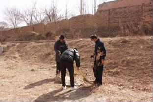 開展環境衛生整治 助(zhu)推(tui)美(mei)麗鄉(xiang)村(cun)建設