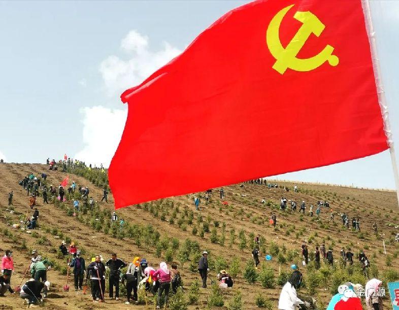 黨旗飄過萬畝綠∣門源縣廣大黨員積極投身(shen)國土綠化大會戰
