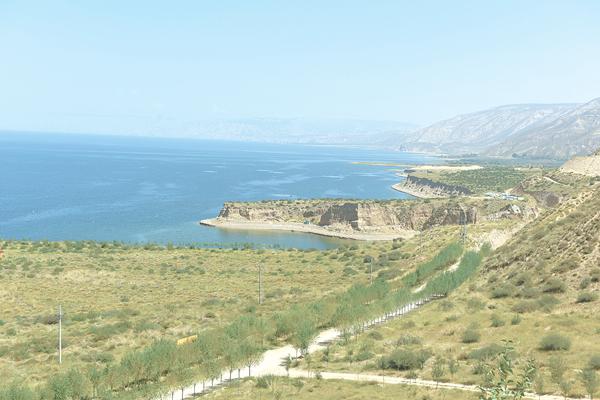 讓黃河成為造福人民的幸福河:荒漠生綠蔭