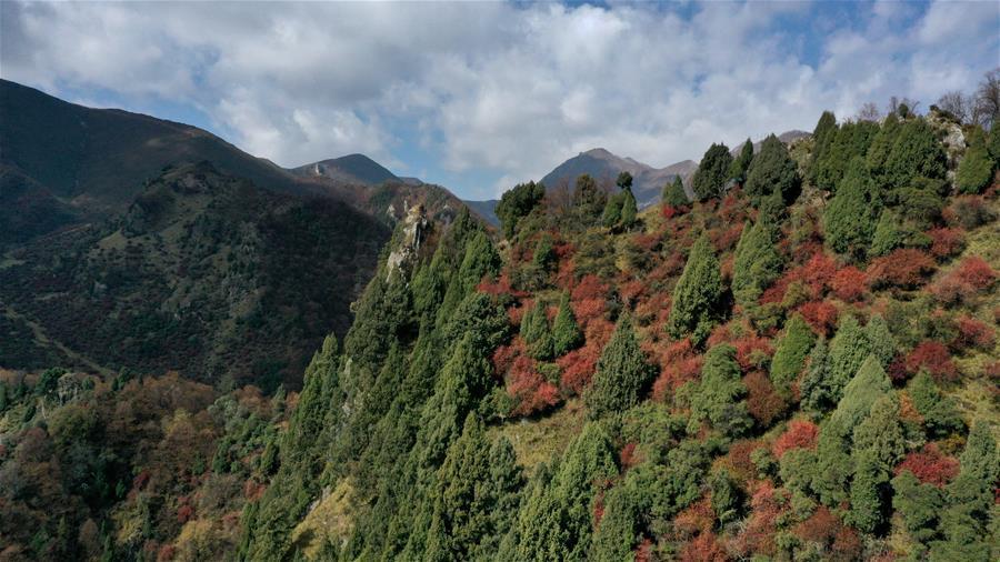 青海海東:地質公園秋色美
