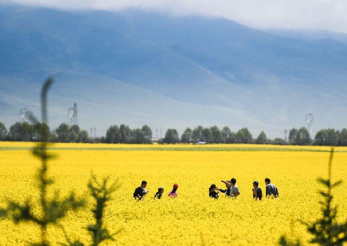 青海:生態旅遊助脫貧